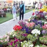 59th Pakistan Flower Show 2010 in Karachi