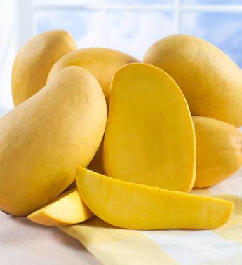 Summer Delight – Mango
