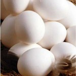 Busting the myths about Eggs