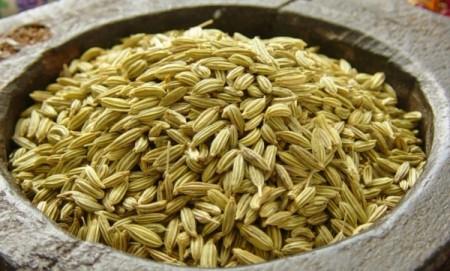 Fennesl saunf the digestive herb