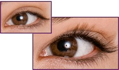 Do Eyelashes Grow Back? Long Lash Growth and Solutions