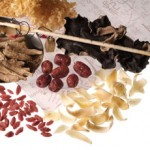 Chinese medicine could treat Parkinson's