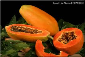 Papaya - Rich source of anti-oxidants and fibre