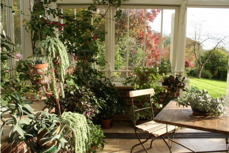 Ideas for Winter Garden Decoration