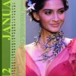 Firdous Lawn Exhibition 2012