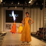 PFDC sunsilk Fashion Week 2012 Day 1 (8)
