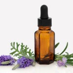 Homemade Beauty: Lavender Antiseptic Lotion