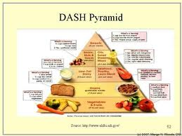 The Dash Diet