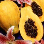 Papaya & Pumpkin Exfoliating Mask