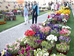 59th Pakistan Flower Show 2010 in Karachi