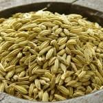 Saunf (Fennel) -The digestive herb