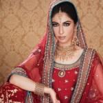 Multi Talented Meesha Shafi