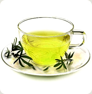 10 Great Benefits of Drinking Green Tea