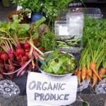 Organic food: Back to the basics