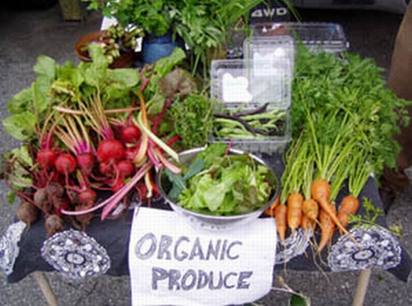 Organic food: Back to the basics