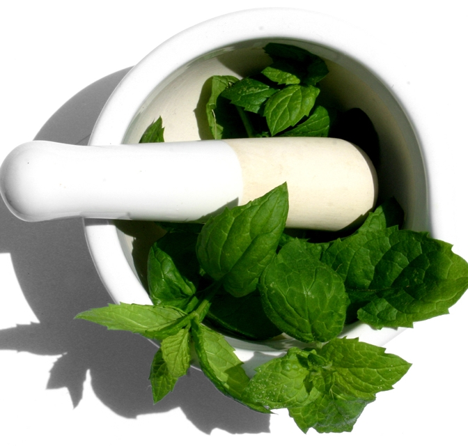 Mint – The Herbal Remedy For You